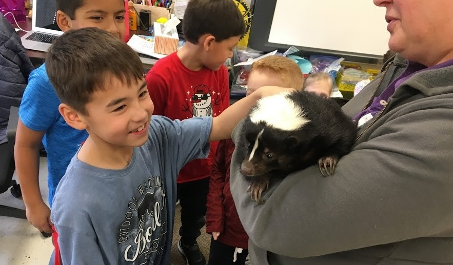 Students petting a skunk in handler's arms
